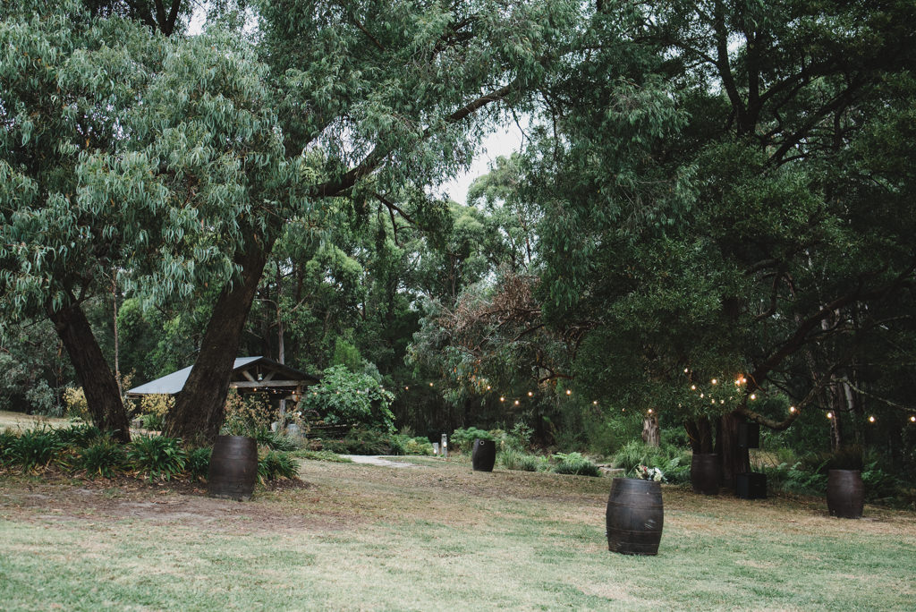 Garden Wedding Celebrant Menzies Creek - Garden Ceremony