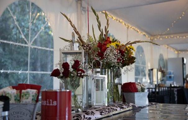 Julie Byrne - Wild Rabbit Farm Celebrant - Inside the Venue